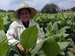 Mujer Cuba.jpg - 10.70 KB