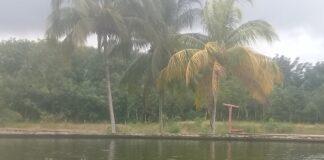 Vista del estanque en el área de ceba